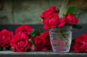 Mooie bloemen